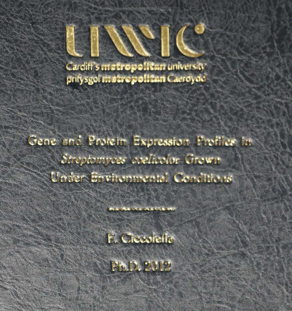 uwic dissertation binding